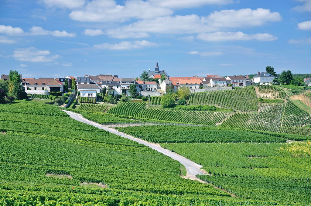 http://www.dreamstime.com/stock-images-cramant-champagne-region-france-wine-village-near-epernay-image44765994